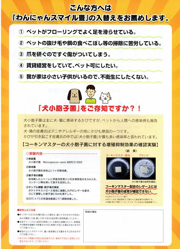 ccf20110222_00001
